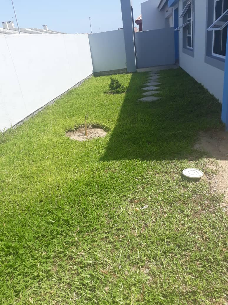 Africa for Kids: Lawn at Clive's house