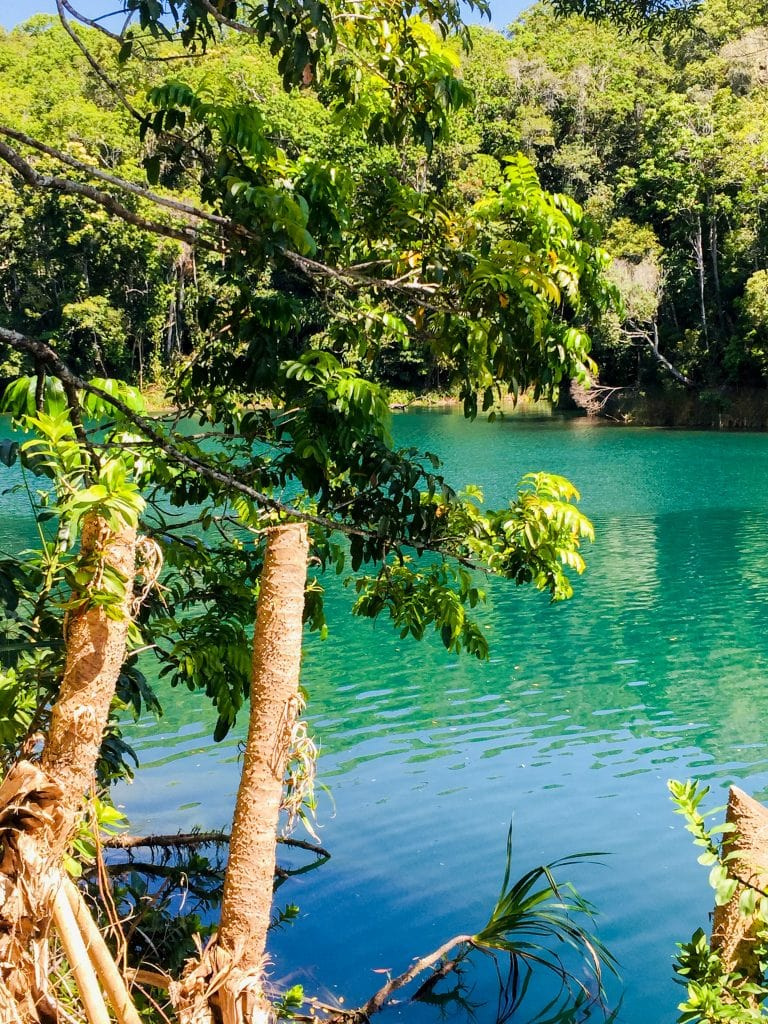 Australia for Kids: Lake Eacham