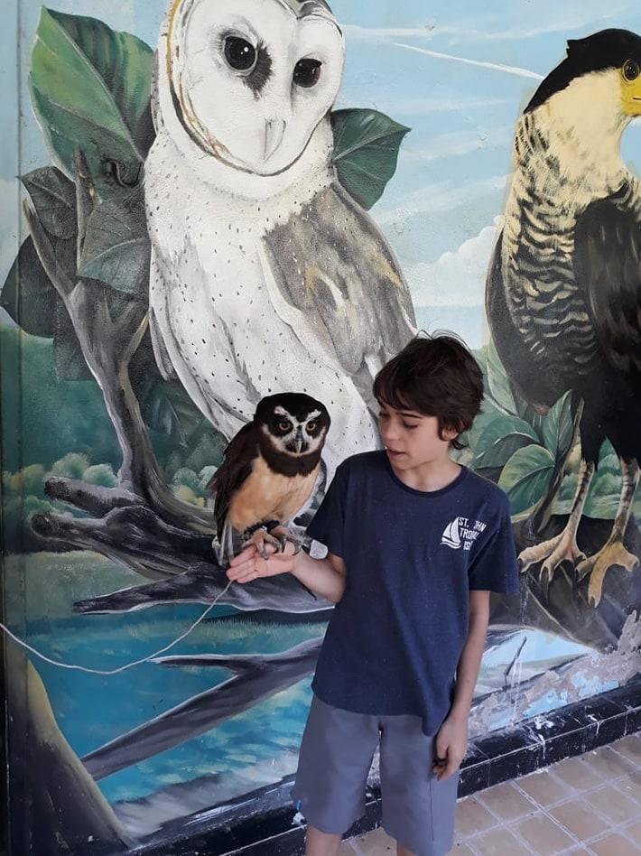 Brazil for Kids: Parque dos Falcões
