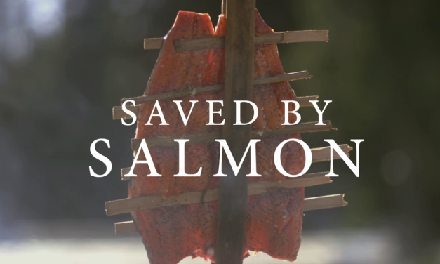 Saved By Salmon