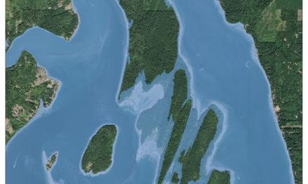 Sea Level Rise to Damage Squaxin Shellfish Habitat
