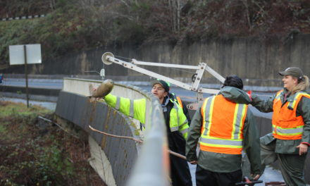 Quileute Tribe Studying Sediment to Save Salmon