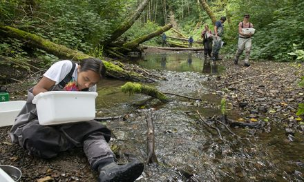 Smallest Residents of Watershed Key Indicators of Overall Watershed Health
