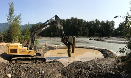 Nooksack Tribe Restores Channel for Spawning Chinook