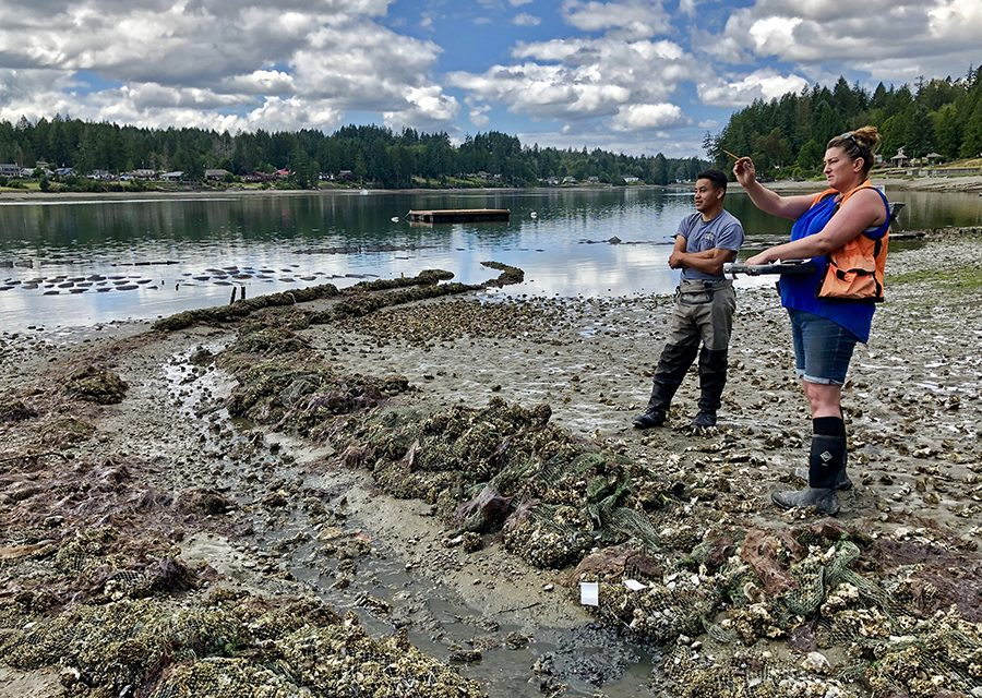 Diplomacy an Aid to Tribes Accessing Treaty Shellfish Resources