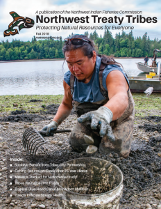 Patrick Braese, Squaxin Island tribal member, harvests shellfish for commercial sale.