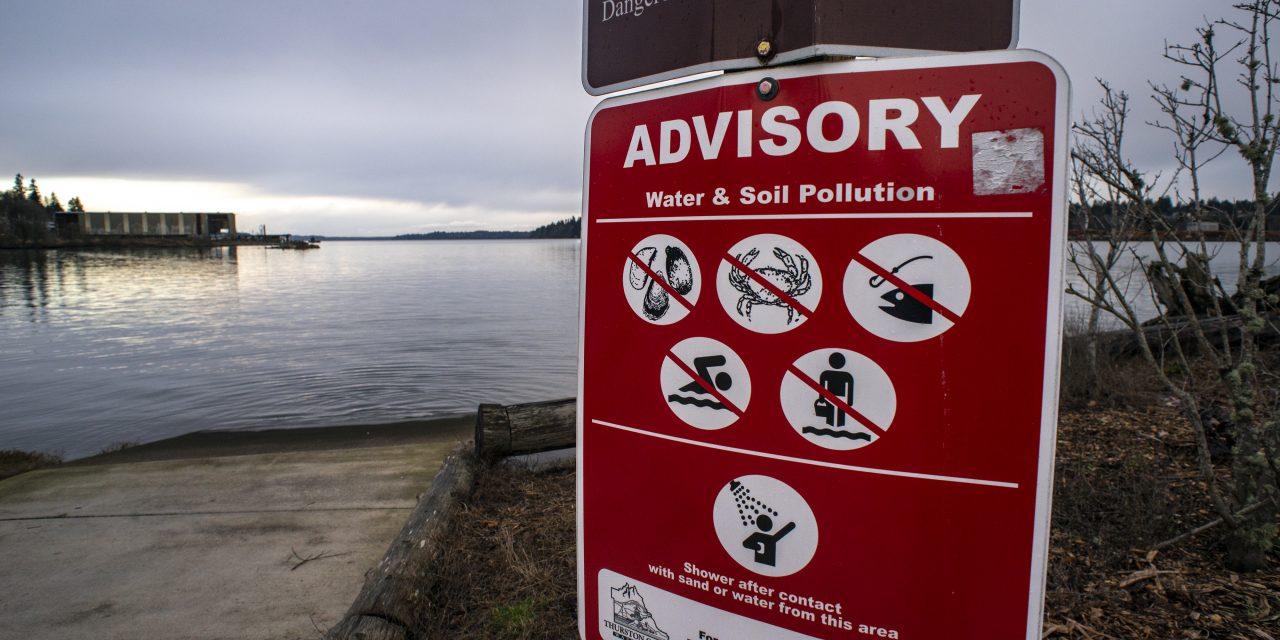 We Must Demand a Healthy Puget Sound