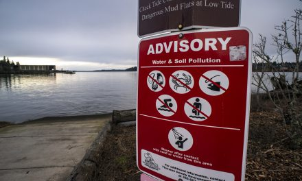 We Must Demand a Healthy Puget Sound
