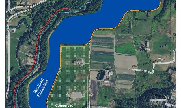 Jamestown S'Klallam Tribe, Partners Preserve River Floodplains, Farmlands