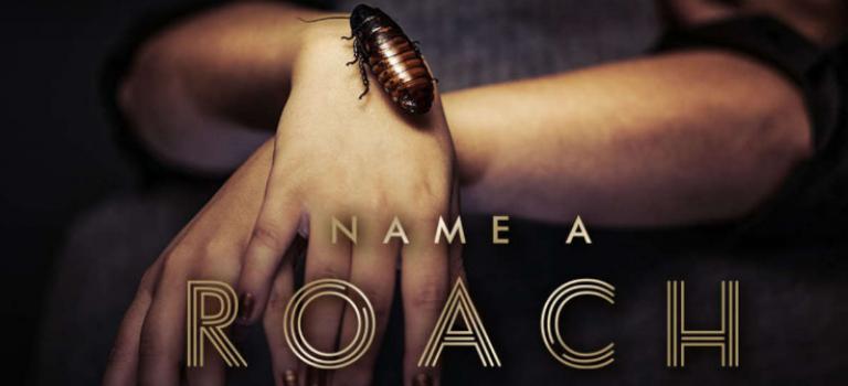 用ex的名字給蟑螂命名 這麼好的情人節禮物怎麼能錯過?!