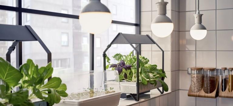 Ikea推環保!最新水耕系統讓你在自家廚房也能种菜!