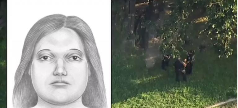 超殘忍!紐約公園再現分屍案,至少兩垃圾袋殘肢被警方尋獲