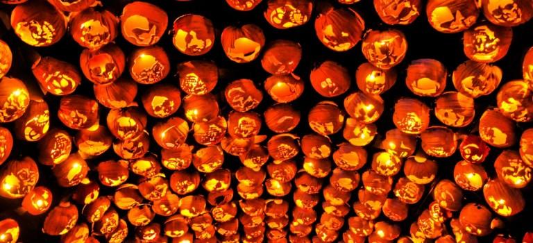 秋季紐約最炫酷的活動! 7000+南瓜燈,你還沒買票嗎?