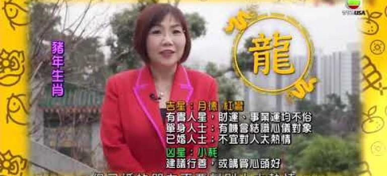 新春開運王2019|肖龍朋友嘅豬年運程