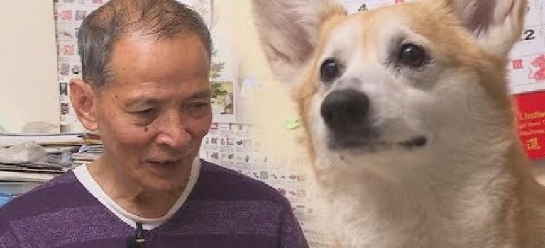 有老伯因養狗而被要求搬走- 東張西望
