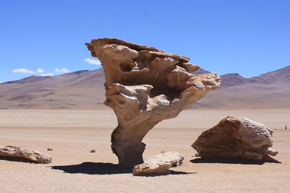 tree of stone in Bolivia
