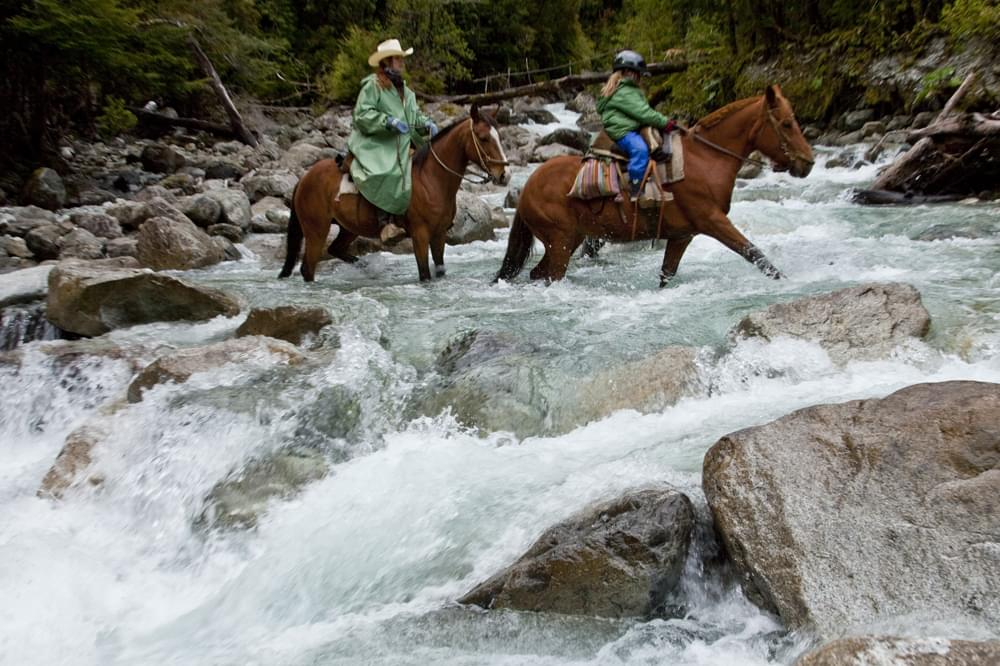 horses crossing the river in patagonia