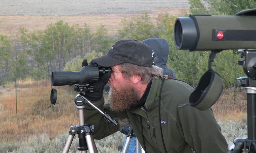wildlife watching with a scope in yellowstone national park