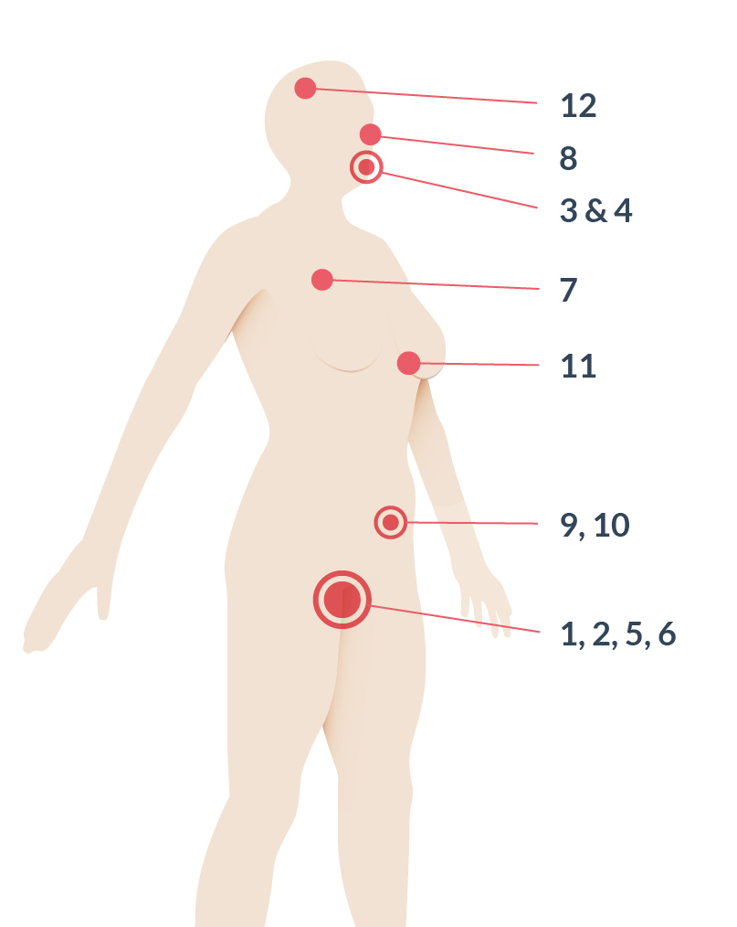 Ovulation signs illustrated on body