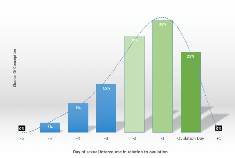 fertile days after period pdf