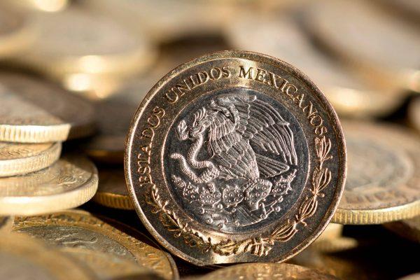 Salario mínimo 2019: ¿para qué alcanza con 102 pesos?