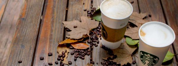 ¿Sabes qué estudió Howard Schultz, CEO de Starbucks?
