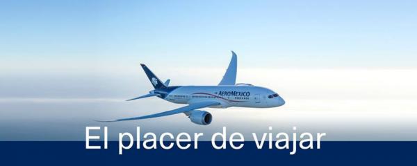 Aeroméxico: lo bueno, bonito y malo de ser parte de una gran empresa