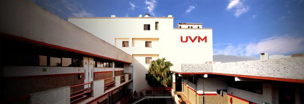 ¡Descubre todo lo que puedes obtener al trabajar en UVM!