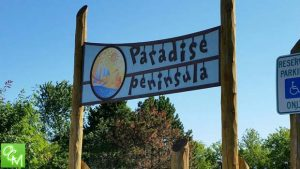 Waterford Summer Social @ Waterford Oaks County Park Paradise Peninsula