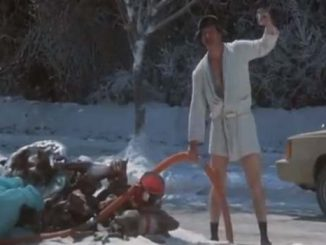 Cousin Eddie from National Lampoon's Christmas Vacation
