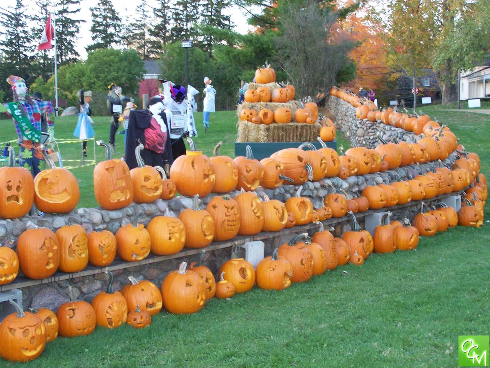 stonewall pumpkin fest