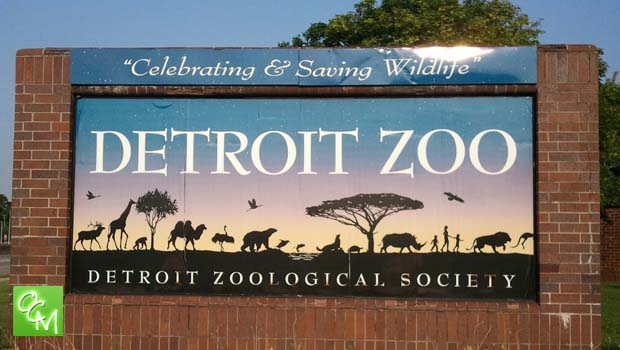 Detroit Zoo Free Summer Concerts 2019 Oakland County Moms