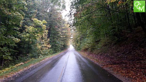 tunnel of trees mi