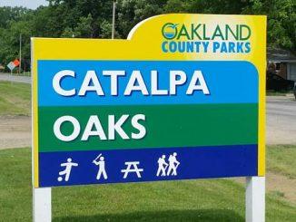 catalpa oaks county park southfield