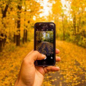 iphone-in-autumn