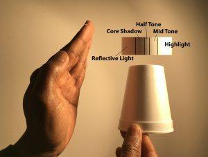 Highlight, mid tone, half tone, core shadow, and reflective light on an object.