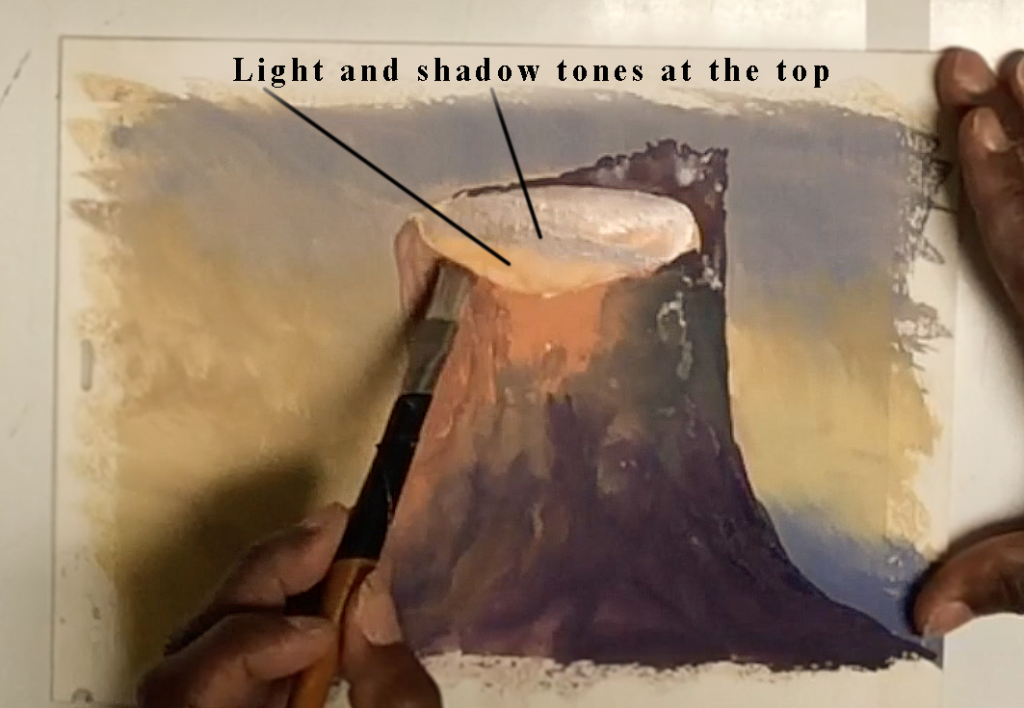 Add light and shadow tones on the top of the tree stump.