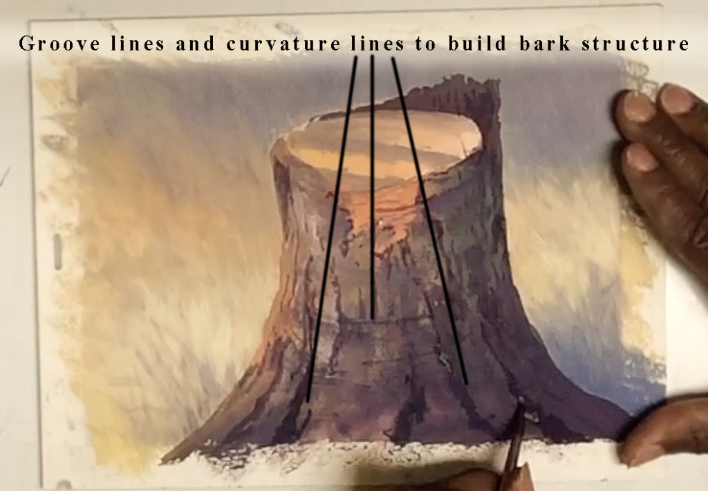Groove and curvature lines build the bark structure.