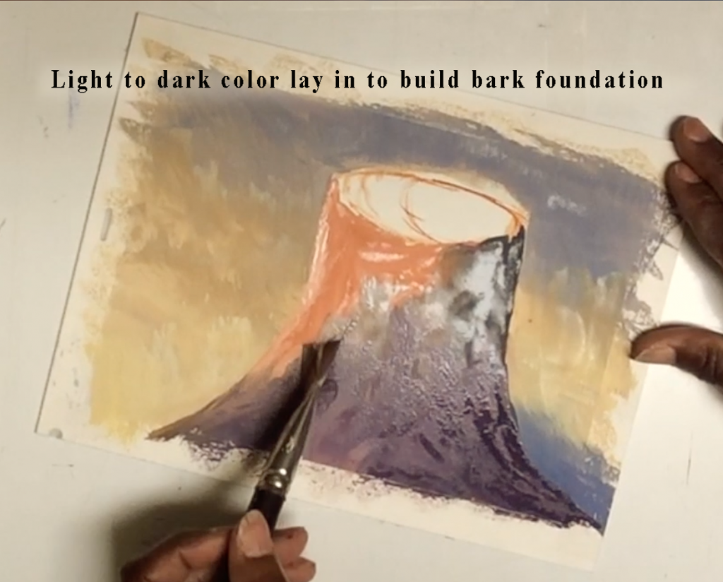 Lay in light-to-dark color to build bark foundation.