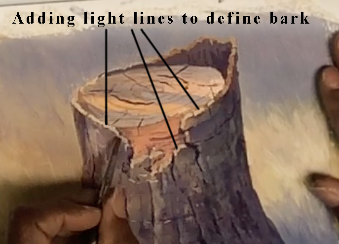 Add lines of light to define the bark.