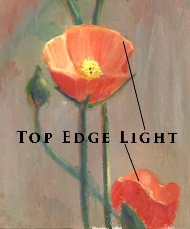 flower painting edge light