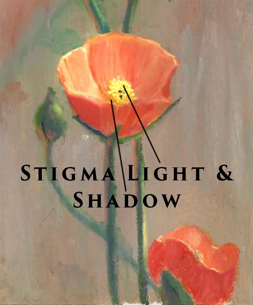 painting light shadow on flower stigma