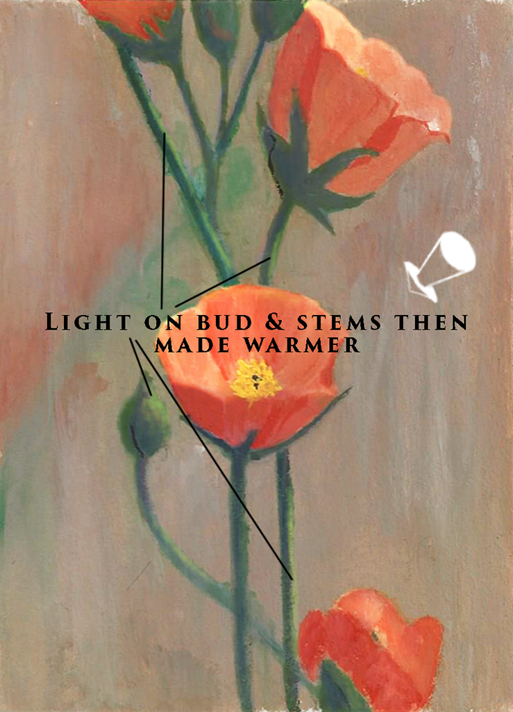 Painting light on flower buds, stems