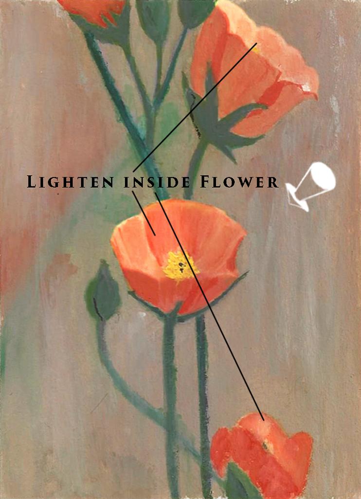 painting light in flower