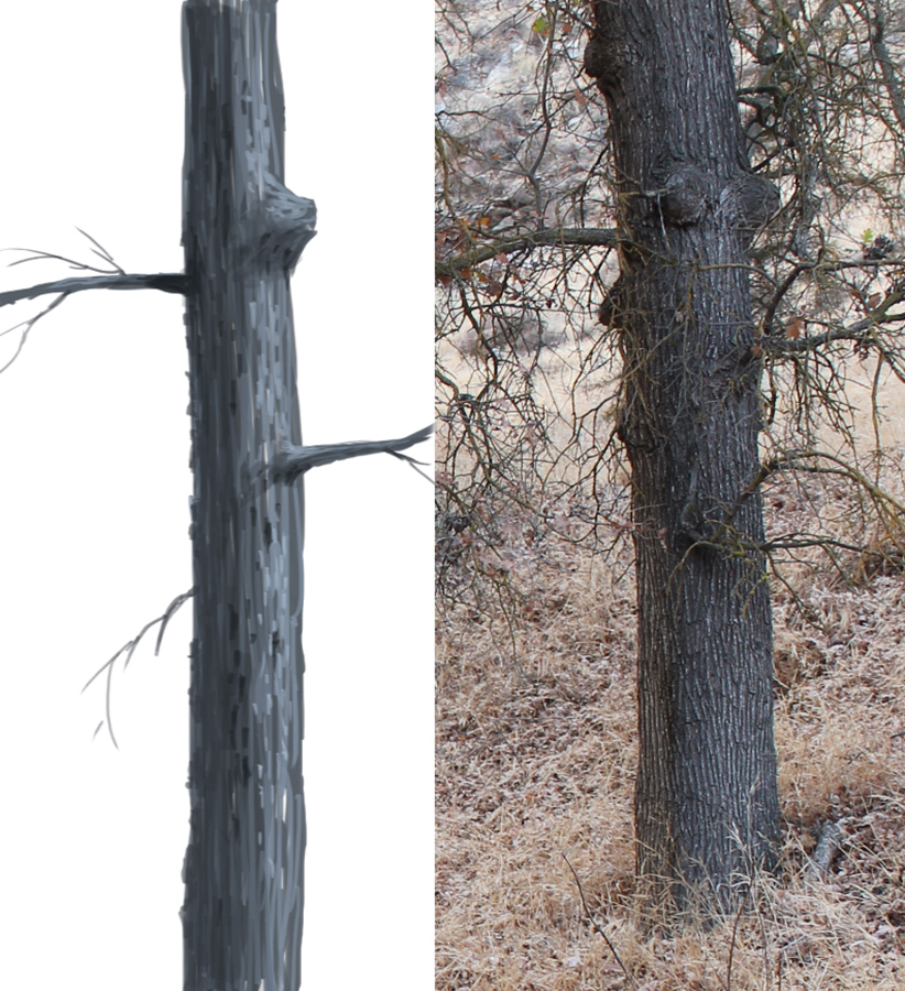 Painting of tree showing dimension