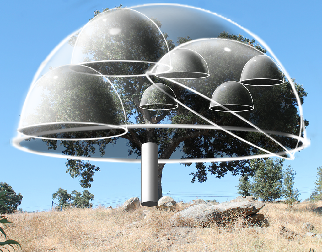 tree photo with all size domes and cylinder