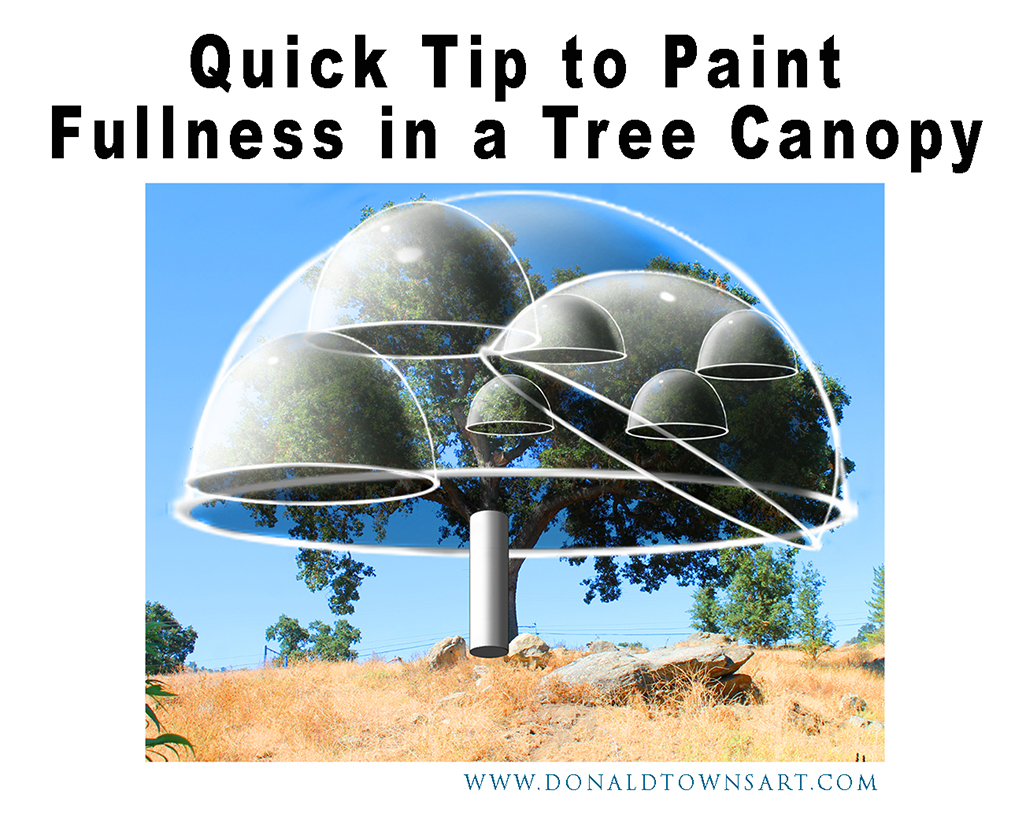 tree photo with paint fullness domes