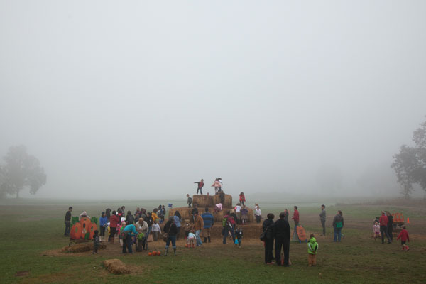 Sauvie Island: School groups from the region arrive on Sauvie Island in droves during the weeks leading up to Halloween. Just ten miles from downtown Portland, Sauvie Island is a weekend refuge for Portlanders seeking a touch of rural hospitality and scenery.