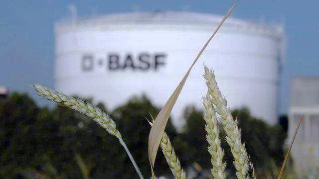 BASF launches next generation of carotenoid formulations