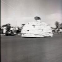 Parade--Woman Wearing a Huge Dress Skirt
